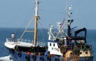ضبط 47 صيادا تونسيا قبالة سواحل زوارة