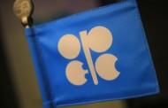 تحرك جزائري داخل أوبك بهدف استقرار أسعار النفط