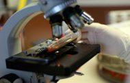 فيروس اصطناعي للقضاء على السرطان