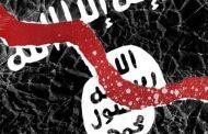مجرمو داعش الأجانب يستبيحون ويغتصبون أراضي الوطن لمصلحتهم الشخصية