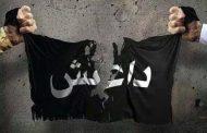 العدو واحد والإرادة موحدة.. العرب يتحدون ضد الدواعش ويستردون الأرض وسيادتها