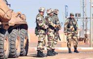 مقاتلوا داعش: ذئاب منفردة أم مجموعة فئران منهزمة؟