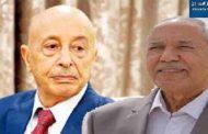 بعيرة يتهم رئاسة البرلمان بالفشل الذريع وتأجيج الخلافات الفردية