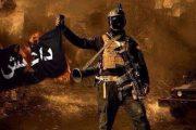 محاولات لأنصار داعش تكشف وتحبط من لاهاي إلى مصر