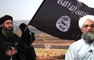 لا حليف لداعش وسط بيئة تنبذه ومجتمع دولي يهدف إلى إبادته