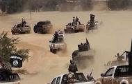 بقايا داعش السامة أمام خيار الكر والفر أو الموت المحتم
