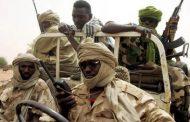 الأمم المتحدة: متمردون من دارفور يعززون وجودهم في ليبيا