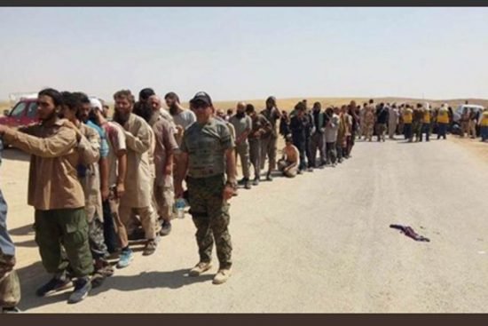 عناصر داعش مجرد أرقام تستغل عند الاستقطاب وتنسى عند الإبادة