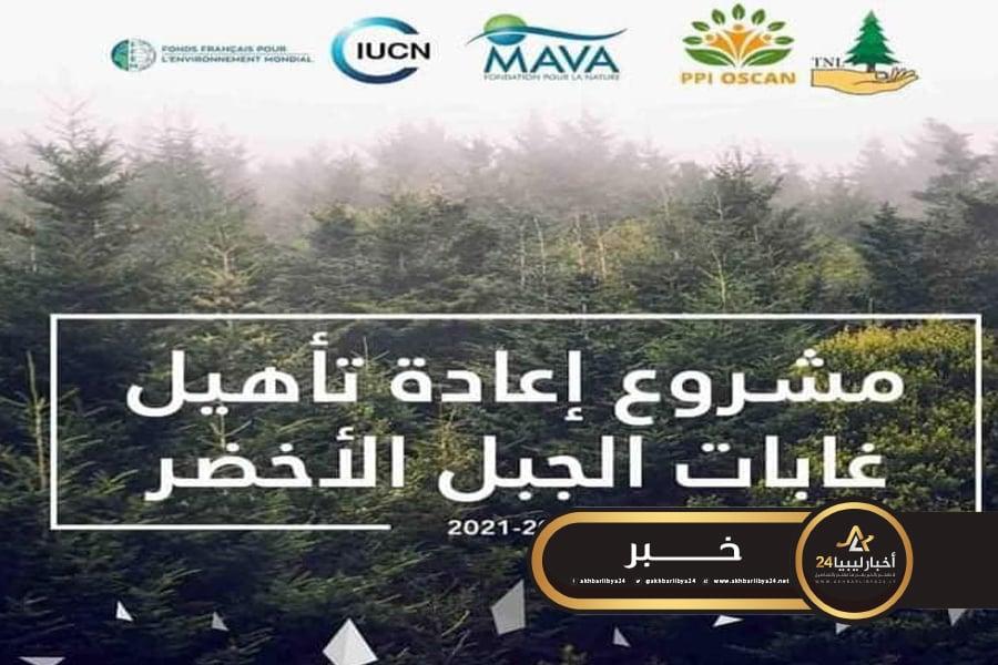 """صورة بزراعة """"150"""" ألف شتلة .. انطلاق مشروع إعادة تأهيل الغابات بالجبل الأخضر"""