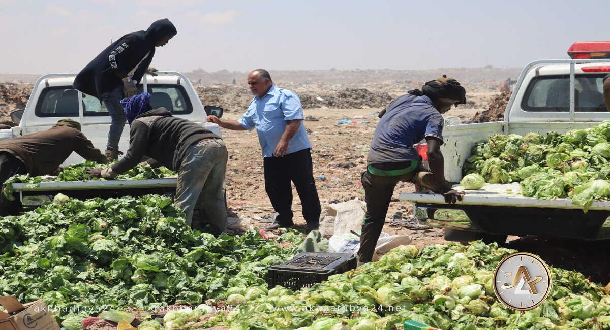 سحب الخس في بنغازي