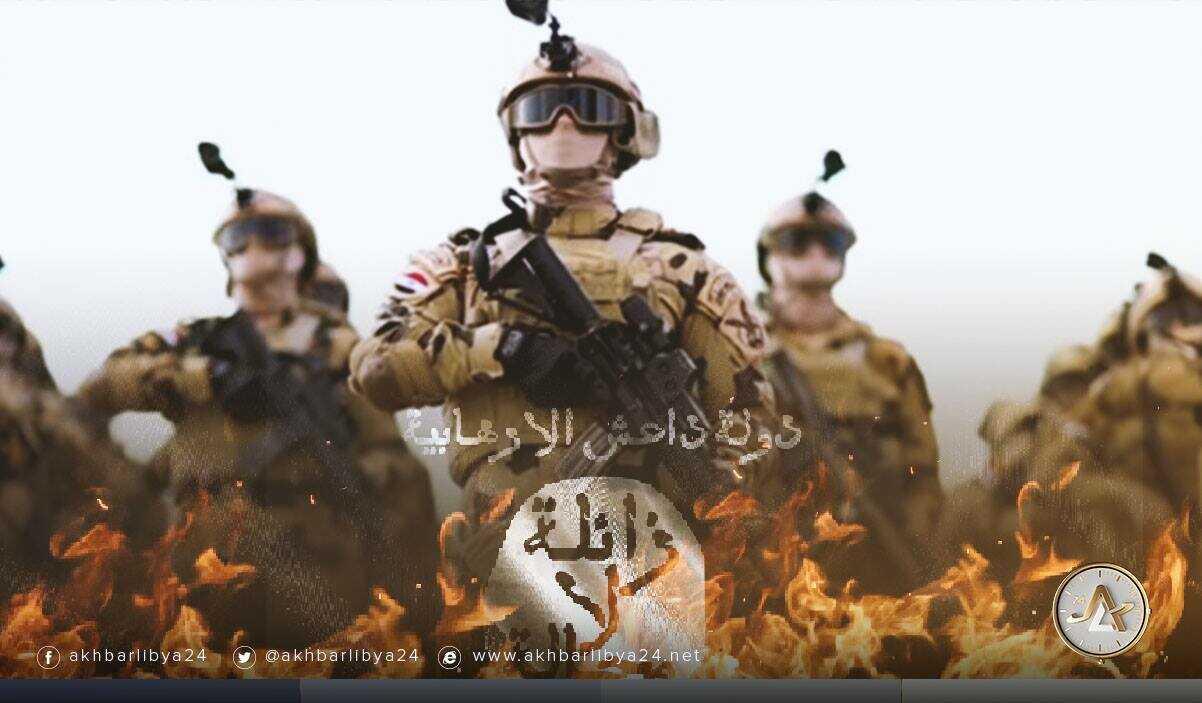 مصر- رؤية مصرية لمحاربة الإرهاب